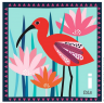 carta ibis.png