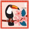 carta tucano.png