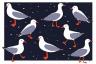 carta uccelli.png